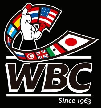 Конгресс WBC-2018 примет Киев
