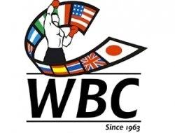 Обновился рейтинг WBC: возвращение Поветкина и Кудряшова, вылет Ковалёва